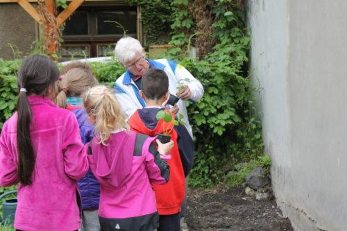 les enfants écoutent les conseils d'un jardinier bénévole
