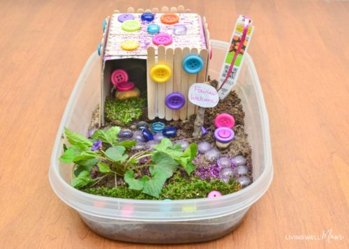 fairy-house-container