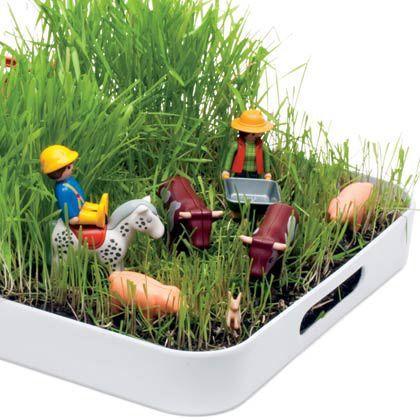 jardin playmo