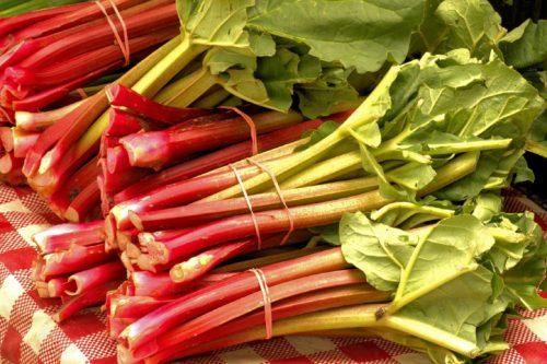 market-fresh-rhubarb-3503166_1280