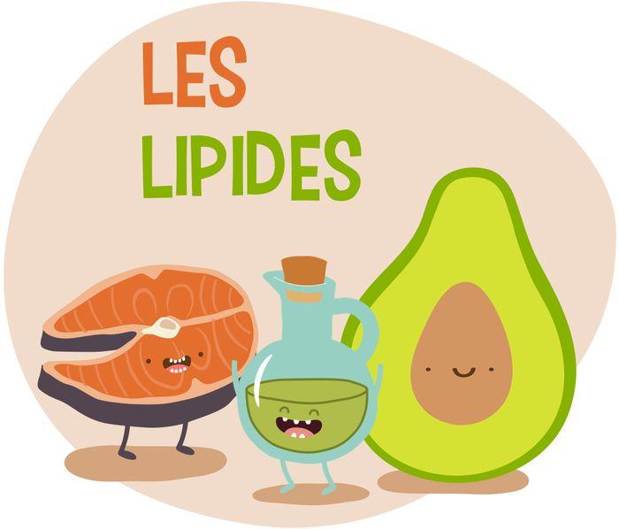 lipides-gras-sante-2