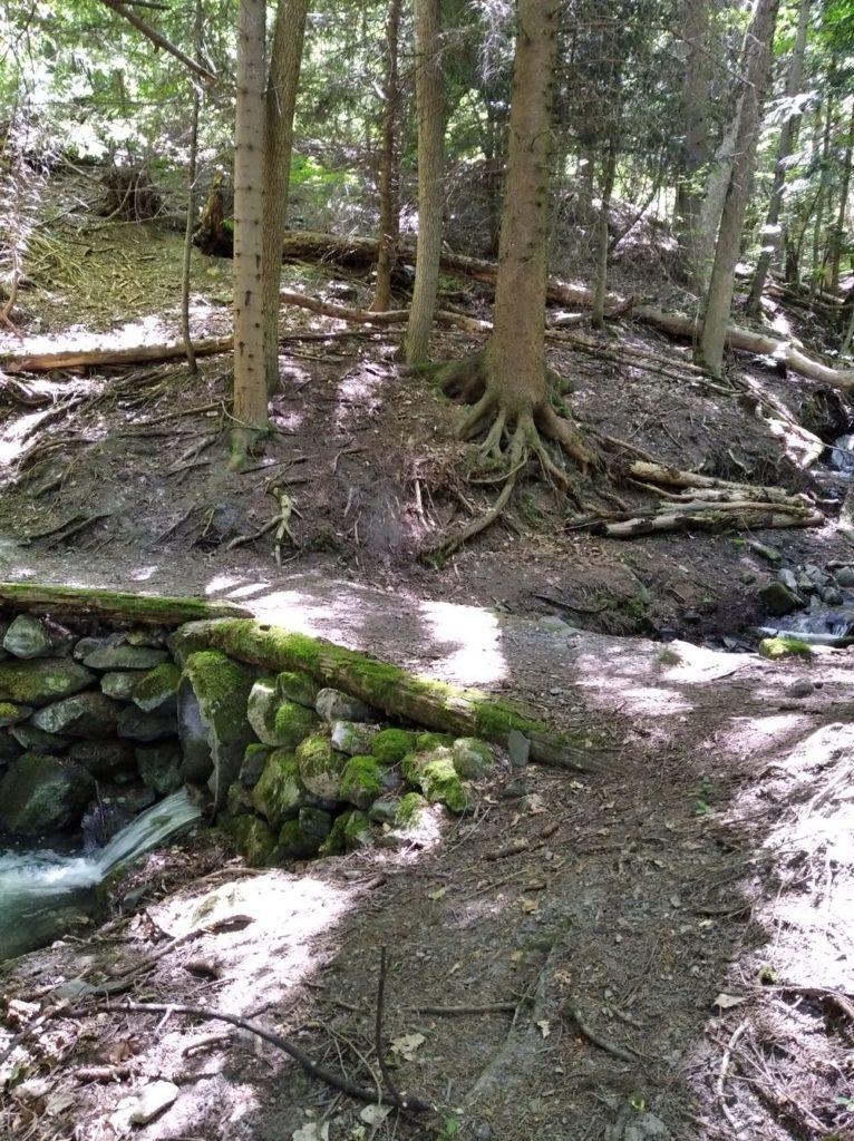 ruisseau 2_redim